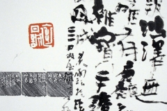 表丹誠 篆刻