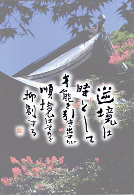 千光寺 ポストカード 夏の護摩堂